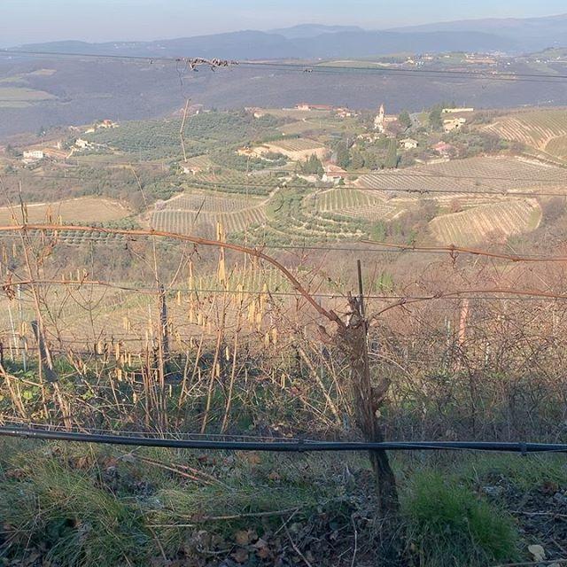 In alta #valpolicella Localita #Trezzolano #Cabotta